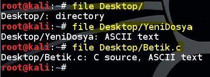 basic-linux-commands-file