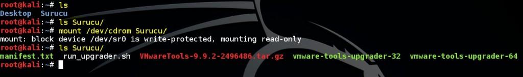 basic-linux-commands-mount