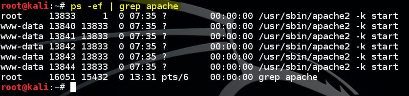 basic-linux-commands-ps