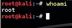 basic-linux-commands-whoami