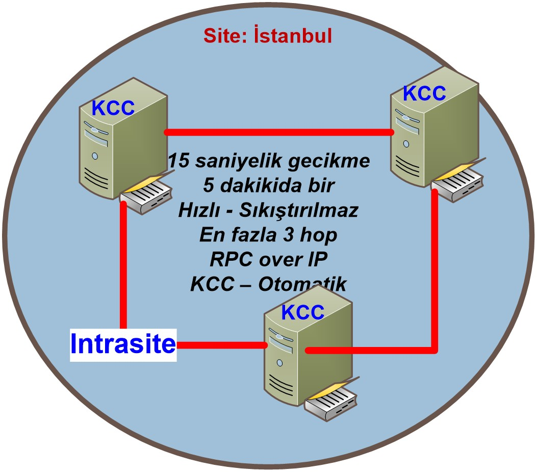 Şekil - 2: Site İçi Replikasyon (Intrasite Replication)
