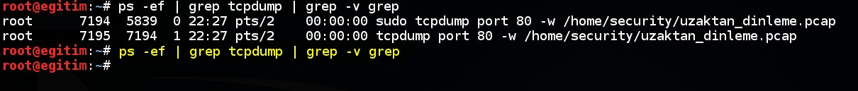 keeping-processes-running-despite-a-dropped-or-ended-ssh-session-by-screen-command-03