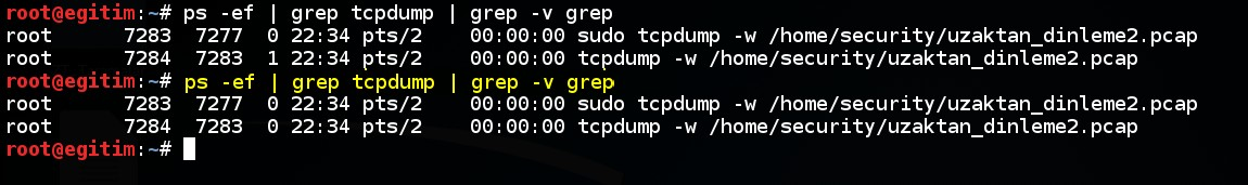 keeping-processes-running-despite-a-dropped-or-ended-ssh-session-by-screen-command-06
