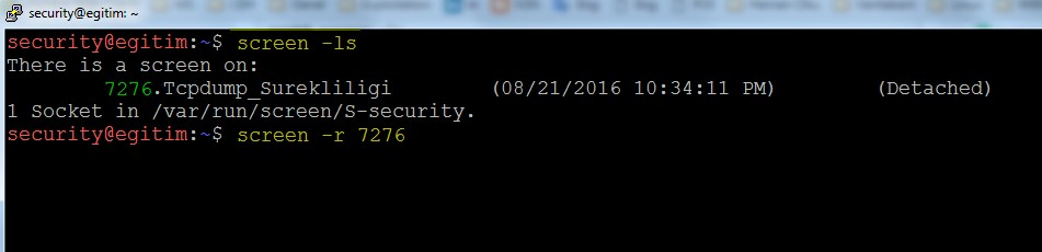 keeping-processes-running-despite-a-dropped-or-ended-ssh-session-by-screen-command-07