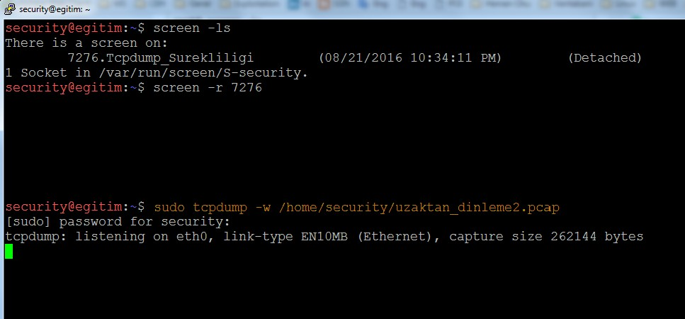 keeping-processes-running-despite-a-dropped-or-ended-ssh-session-by-screen-command-08