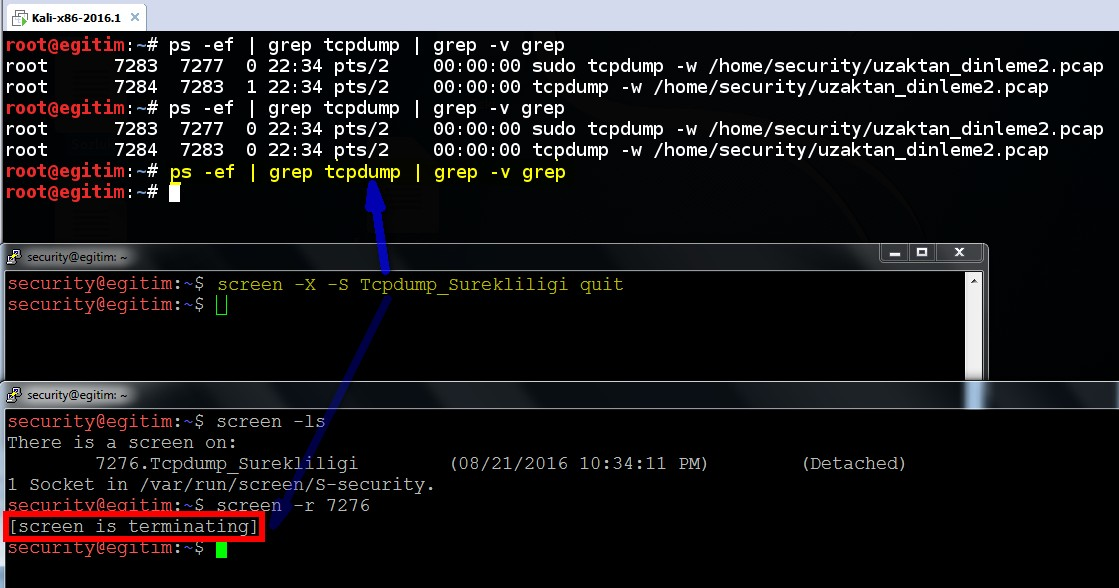 keeping-processes-running-despite-a-dropped-or-ended-ssh-session-by-screen-command-09