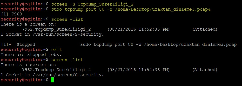 keeping-processes-running-despite-a-dropped-or-ended-ssh-session-by-screen-command-10