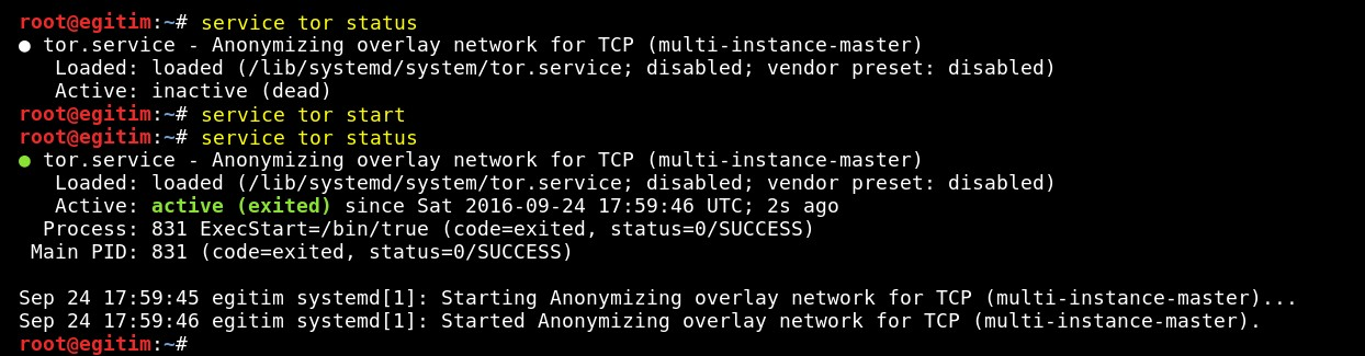 staying-anonymous-on-penetration-tests-on-kali-linux-by-using-tor-tool-17